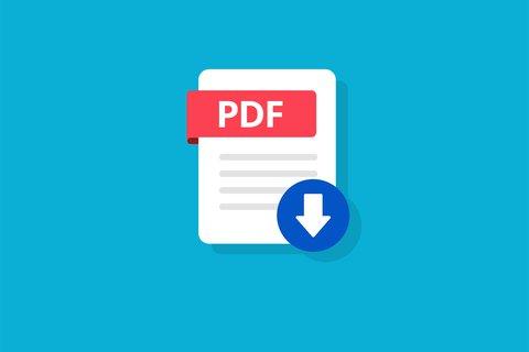 PDF_vector_2.jpg